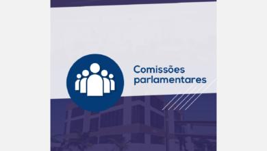 Photo of Comissões Parlamentares